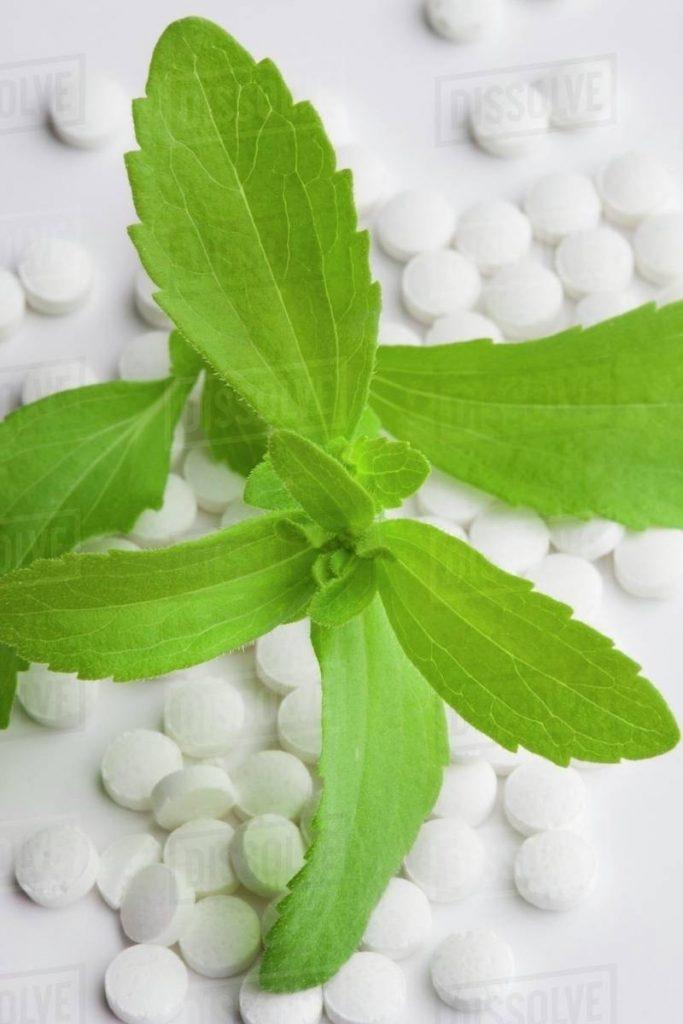 Stevia tablet